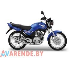 Прокат Yamaha YBR 125 в Минске