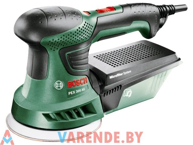 Эксцентриковая шлифмашина Bosch PEX 300 AE напрокат в Пинске - 1/4