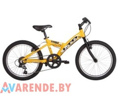 Велосипед детский LTD Bandit 24d напрокат в Минске