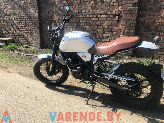 Аренда( прокат) мотоцикла Minsk SCR250 в Минске. - 2/4