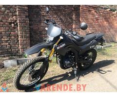 Аренда( прокат) мотоцикла Minsk SCR250 в Минске.